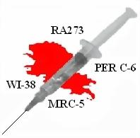 needleBrochure2